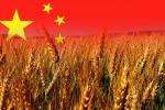 650 миллионов тонн зерновых