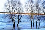У Магілёўскай вобласці на рэках амаль не засталося лёду