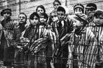 Форум, посвященный Международному Дню памяти жертв Холокоста, пройдет 27 января