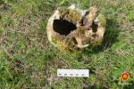 Брастаўчанін знайшоў на дачы касцявыя астанкі