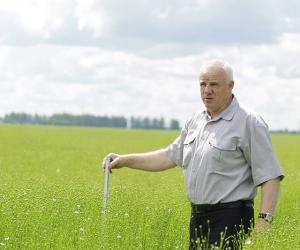 Беларускія навукоўцы пра асаблівасці і складанасці вырошчвання ільну