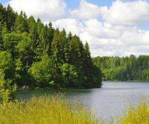 Тайны озера Гиньково
