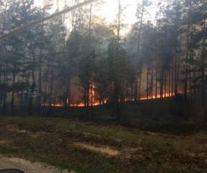 Тушэнне пажару на Альманскіх балотах працягваецца