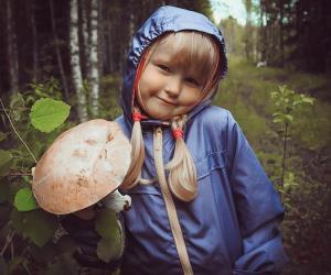 Что нужно знать, чтобы не отравиться грибами