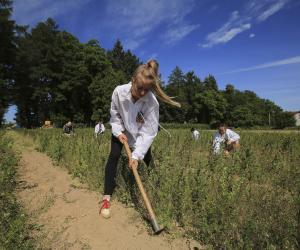 Потушить «зеленый пожар» — главная задача бойцов полевого «фронта»