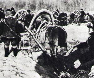 Санный рейд. Как партизаны совершили победную операцию на Полесье в 1942-м