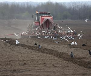 В сельском хозяйстве надо кардинально менять повышение квалификации