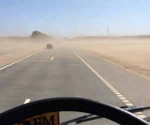 Моцны вецер: паваленыя дрэвы і пясчаная бура