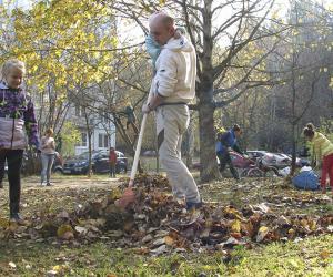 Озеленение, экотропинка, велопарковки. Как наводится порядок на земле в Минске