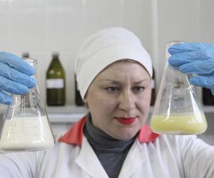 В обозримом будущем Россия может перестать нуждаться в импорте молока