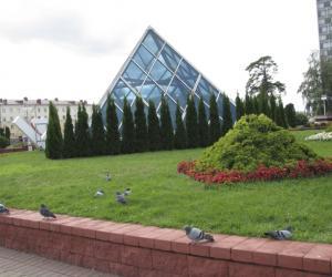 Специалисты рассказали о требованиях к красоте ландшафта, вертикальном озеленении