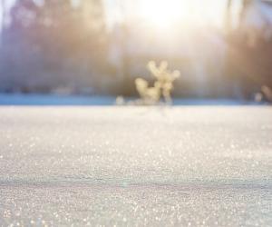 Осадки в виде мокрого снега еще будут, но он сразу растает