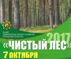 В лесу – порядок!