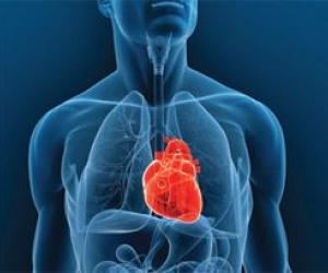 Трансплантации сердца — 10 лет