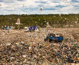 Как под Минском сортируют мусор