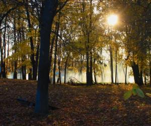 Залатая восень у Смілавічах (відэа)