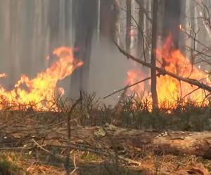 Чым пагражаюць пажары ў зоне адчужэння ЧАЭС?