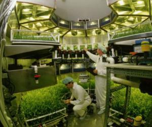 Центр космического растениеводства