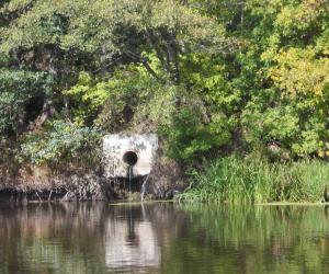 Одно правило для всех: сточные воды подлежат локальной очистке