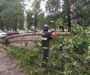 В понедельник южную часть Брестчины накрыл ураган