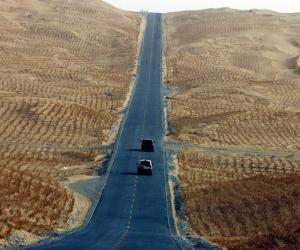 «Касметолаг» пустыні