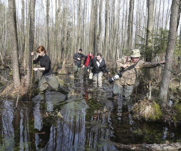 Какой потенциал имеют белорусские болота?