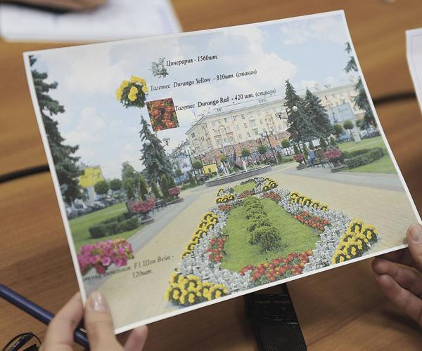 Экзатычныя кветкі сёлета з'явяцца на вуліцах Гомеля