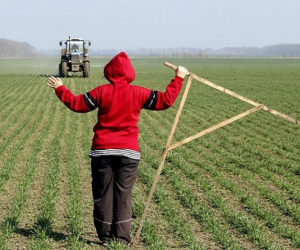 Фермеры просяць зямлі. Яе выдзяленне практычна прыпынена