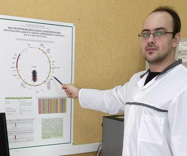 Гомельскія вучоныя расшыфравалі геном жука-караеда