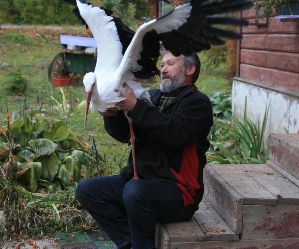 Першая дапамога для крылатых і чатырохногіх