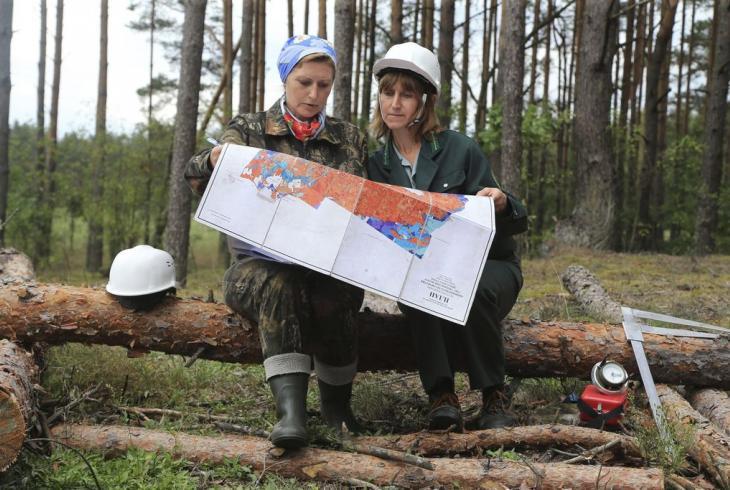 Святавольскія лесаводкі