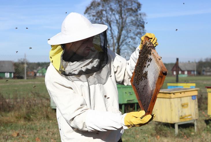 Дзе мёдам намазана?