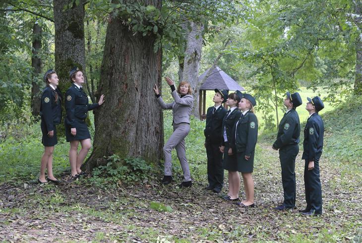 Школьны лес