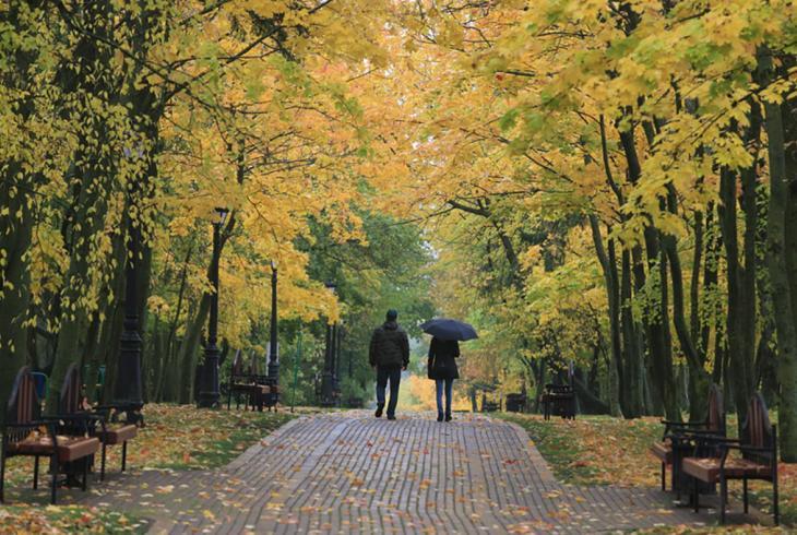 Восеньскі вернісаж у Лошыцы