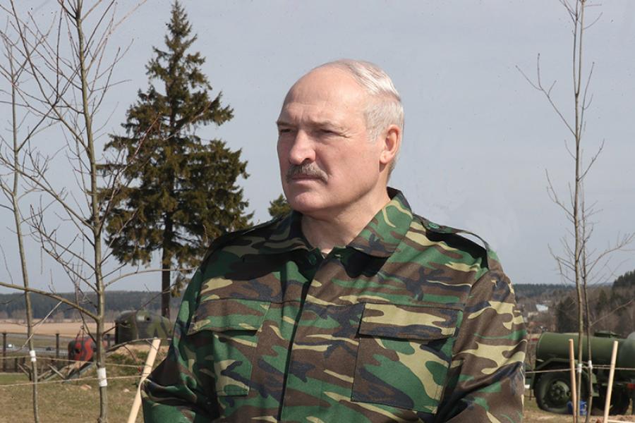 Лукашенко: Беларусь останется надежным соседом и хорошим другом Украины