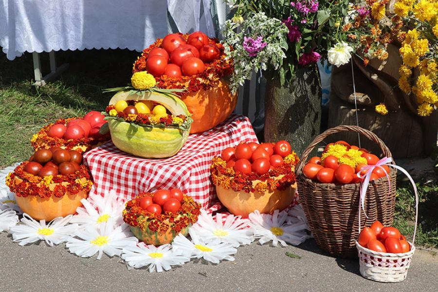 В Гродненской области хороший урожай на помидоры, но невысокий спрос
