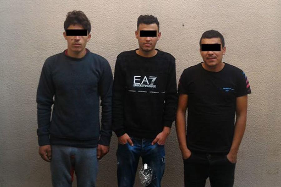 В Беловежской пуще задержаны каратисты из Алжира