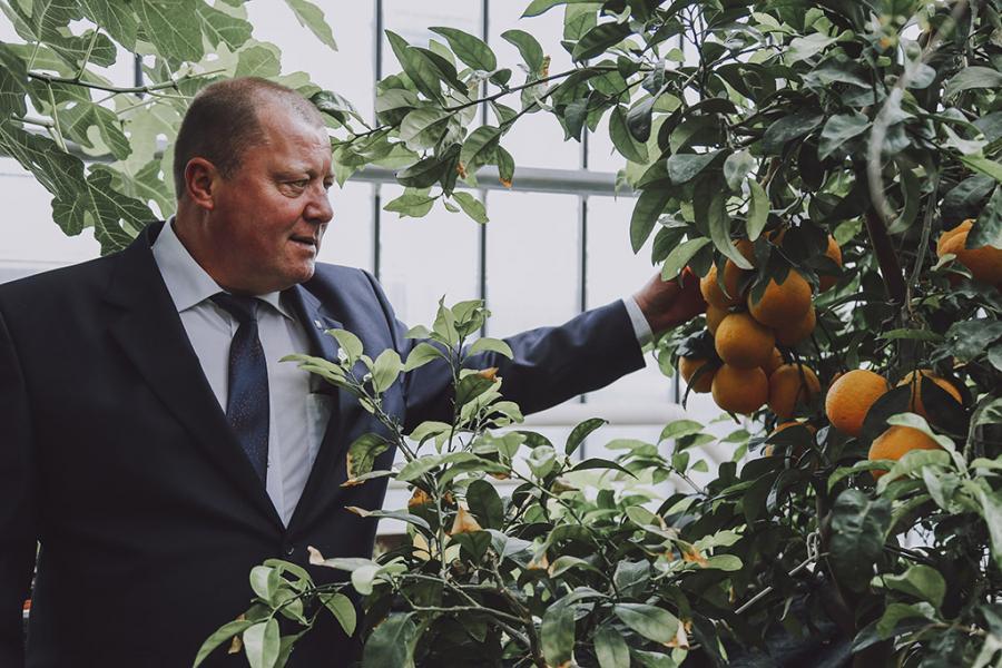 У Цэнтральным батанічным садзе з'явіцца новы сімвал беларускай сталіцы