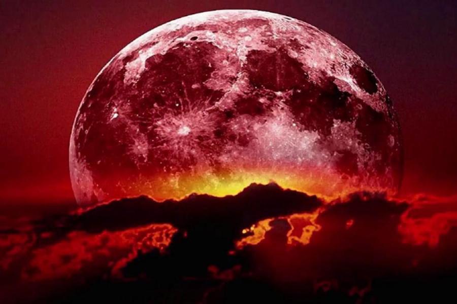 Почему Луна снова в тренде?