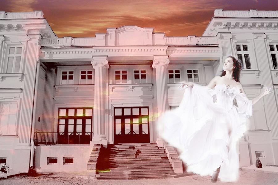 Архітэктура палаца князёў Друцкіх-Любецкіх у Шчучыне