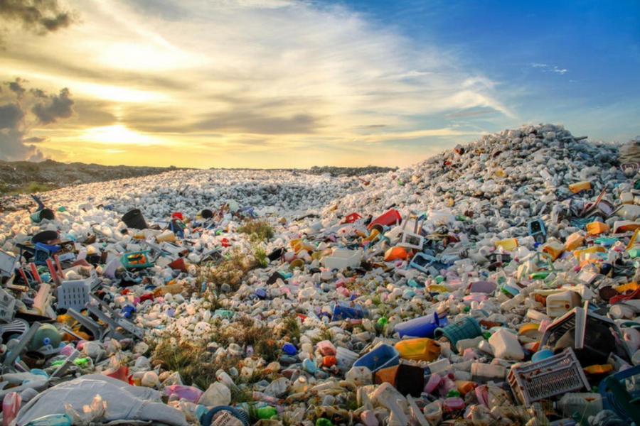 Дело – в пластике