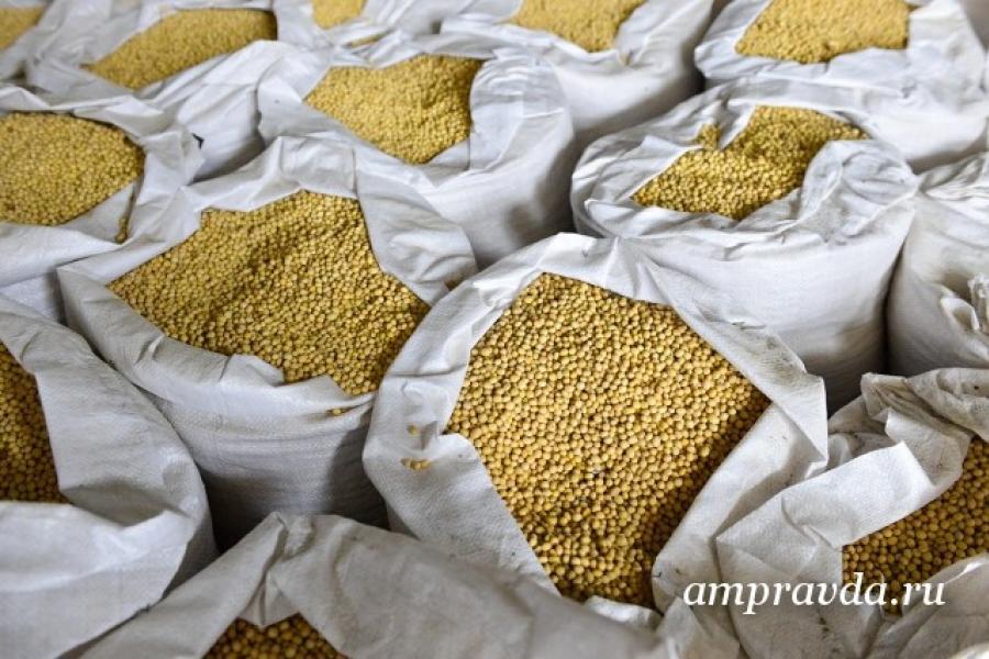 У Кітаі устаноўлены новы рэкорд па ўраджайнасці соі