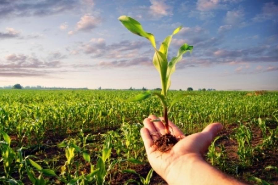 Министерство сельского хозяйства и продовольствия отмечает юбилей