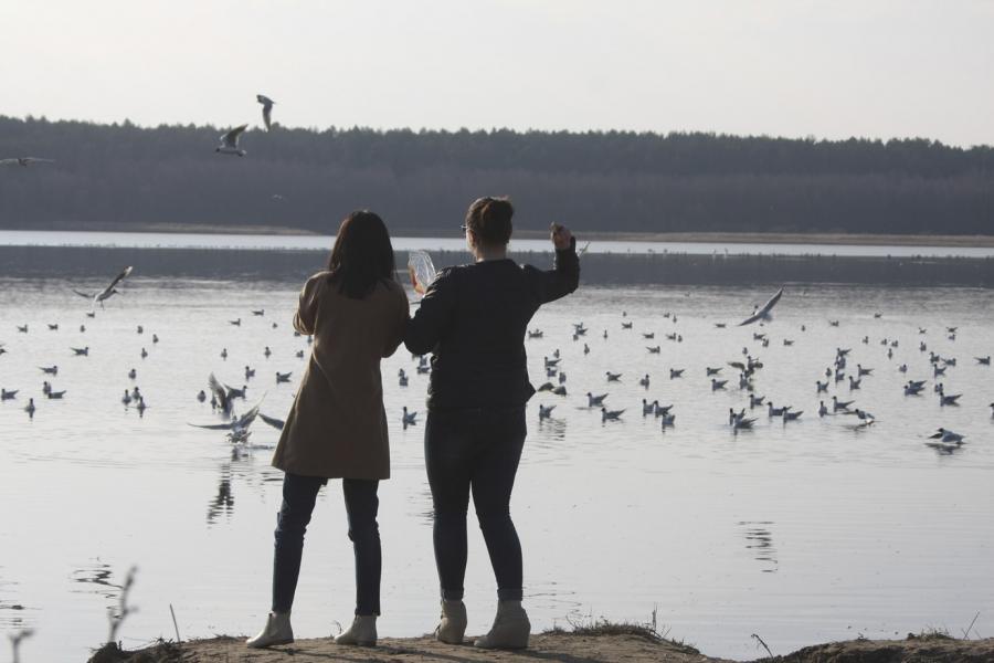 Люди — как птицы…